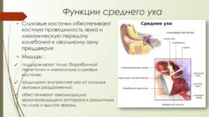Нарушение функции мышц среднего уха
