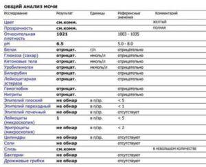 Белок и эритроциты в моче