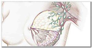 Лимфоузлы при предстоящей менструации