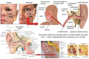 Заложенность уха после промывания носа