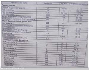 Повышены лимфоциты и базофилы