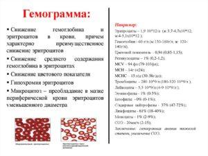 Повышены эритроциты, низкий гемоглобин