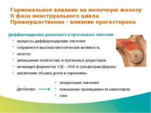 Боль в груди во второй фазе цикла