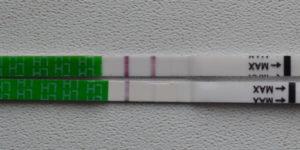 Тест на овуляцию 2 полоски