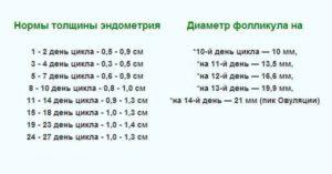 Доминантный фолликул 20мм на 7 день цикла
