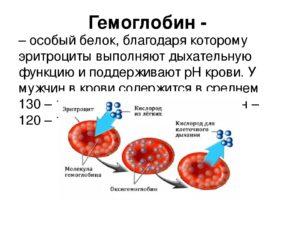Повышены эритроциты и гемоглобин