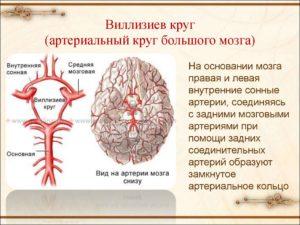 Сужение просвета по обеим задним соединительным артериям