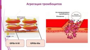Агрегация тромбоцитов