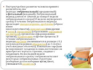 Срок беременности - акушерский и эмбриональный