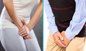 Боль в паху при остеохондрозе