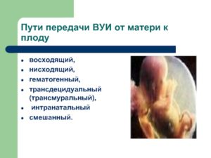 Гематогенная и восходящая внутриматочная инфекция (диффузно-очаговый продуктивный виллезит)