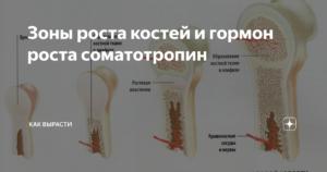 Онанизм и ускорение закрытия зон роста костей