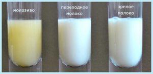 Выделение молока после прекращения гв