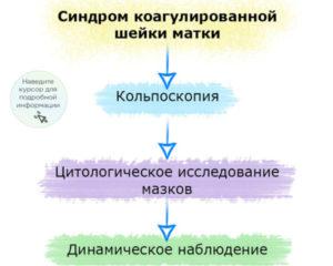 Синдром коогулированной ш/м