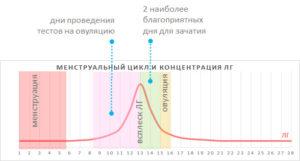 Уровень ЛГ после овуляции