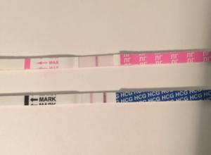 Тест на овуляцию показывает ли беременность