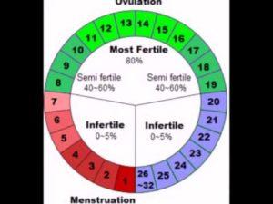 Во сколько лет женщина уже точно не может забеременеть