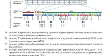 Сдавали анализ микроделеций Y-хромосомы при азооспермии (AZF-фактор), помогите пожалуйста