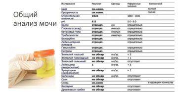 После лечения холецистита лейкоциты в моче 500