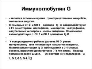 Повышен иммуноглобулин M и G